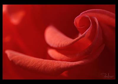 Photograph - Spiral's Heart   Card by Raffaella Lunelli