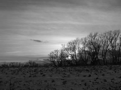 Photograph - Spirit Trees by Rhonda Barrett