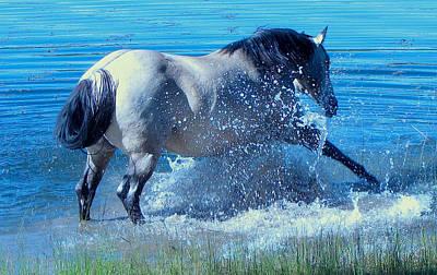 Splashing Horse Art Print by FeVa  Fotos