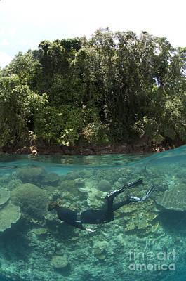 Photograph - Split Level View Of Snorkeller by Steve Jones
