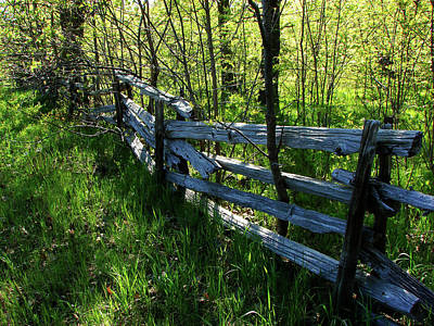 Mixed Media - Split Rail Cedar Fence by Bruce Ritchie