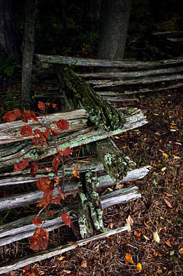 Striking Photograph - Split Rail Fence by LeeAnn McLaneGoetz McLaneGoetzStudioLLCcom