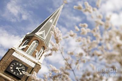 Charlotte Fine Art Photograph - Spring At Belmont Abbey College by Patrick Schneider