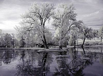 Photograph - Spring At The Pond by HW Kateley