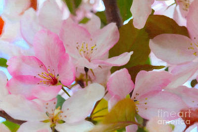 Digital Art - Spring Bloom Paint by Donna Munro