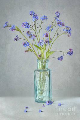Spring Blues Art Print by Jacky Parker