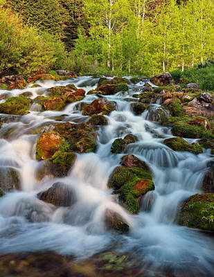 Photograph - Spring Cascade by Leland D Howard