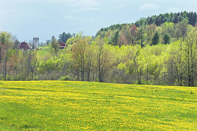 Maine Meadow Photograph - Spring Farm Landscape With Dandelion Bloom In Maine Photograph by Keith Webber Jr