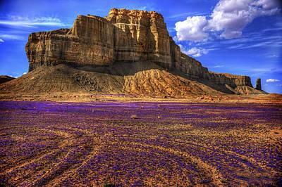 Multiflora Photograph - Spring Formation by Carolyn Rauh