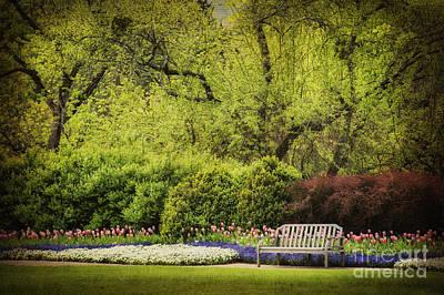 Photograph - Spring Garden by Cheryl Davis