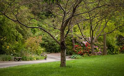 Spring Garden Landscape Art Print by Mike Reid