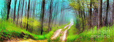 Photograph - Spring Green Dirt Road by Gina Signore