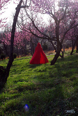 Photograph - Spring Hath Sprung 1 by Alana  Schmitt