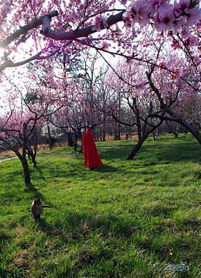 Photograph - Spring Hath Sprung 2 by Alana  Schmitt