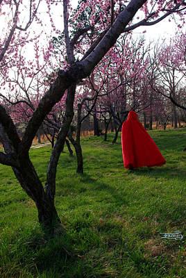 Photograph - Spring Hath Sprung 3 by Alana  Schmitt