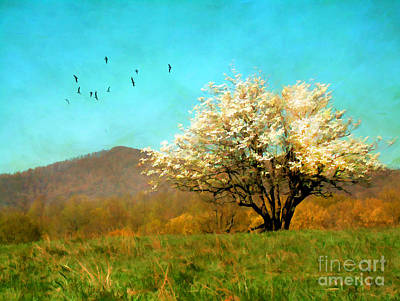 Spring In The Mountains Art Print by Darren Fisher