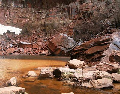 Spring In Zion Park  Art Print
