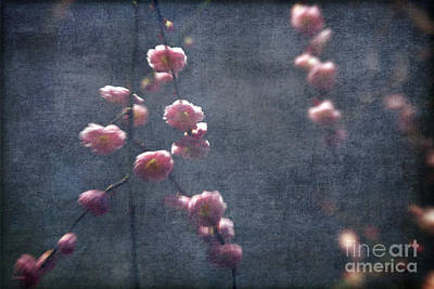 Photograph - Spring Is Near by Eena Bo