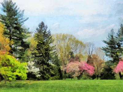 Photograph - Spring Landscape by Susan Savad