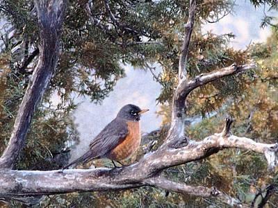 Robin Digital Art - Spring Morning Robin by Ernie Echols