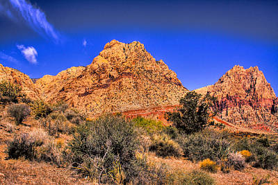 Cactus Photograph - Spring Mountain Ranch In The Red Rock Canyon by David Patterson