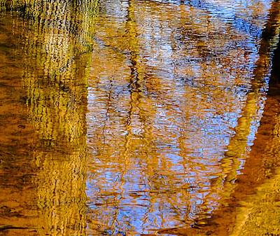 Photograph - Spring Pond Reflections by Beth Akerman