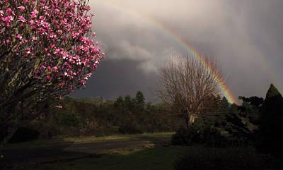 Spring Rainbow Art Print