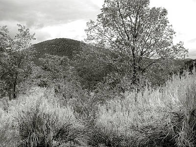 Photograph - Spring Santa Fe - Black And White by Kathleen Grace