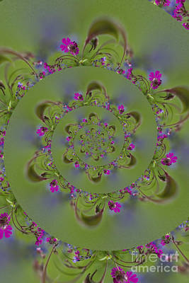 Photograph - Spring Spiral. by Clare Bambers