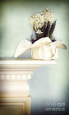 Hyacinths Wall Art - Photograph - Spring Still Life With White Hyacinth by HD Connelly