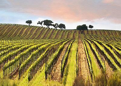 California Vineyard Digital Art - Spring Vineyard by Sharon Foster