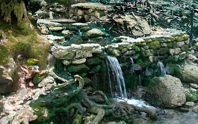Photograph - Spring Water by Viola El