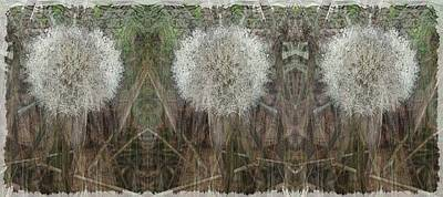 Weed Digital Art - Springtimes Three Amigos by Tim Allen