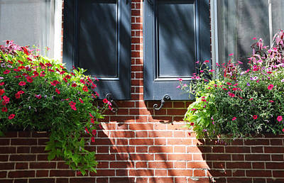 Photograph - Spruce Street Planters by Andrew Dinh