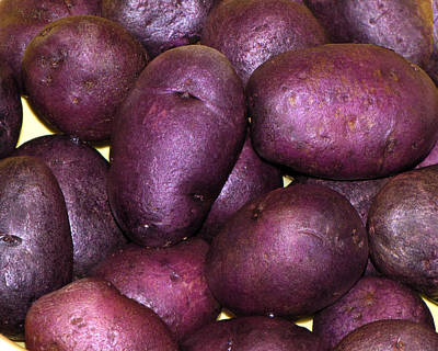 Spuds Photograph - Spuds by Denise Keegan Frawley
