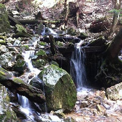 Trail Wall Art - Photograph - #squaready #water #waterfall #forest by Victor Wong