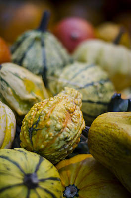 Photograph - Squashes At The Market by Heather Applegate