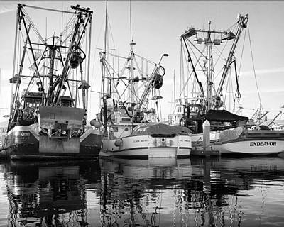 Harbor Dock Photograph - Squid Boats by Steve Munch