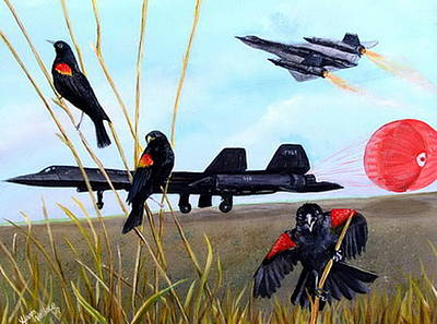 Sr-71 Painting - Sr-71 Black Bird by Leslie Hoops-Wallace