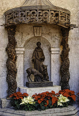Photograph - St. Francis Of Assisi by Sandra Selle Rodriguez