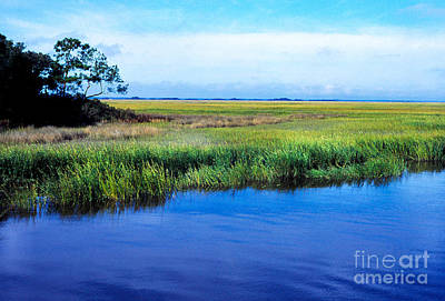 Thomas R. Fletcher Digital Art - St Simons Island by Thomas R Fletcher
