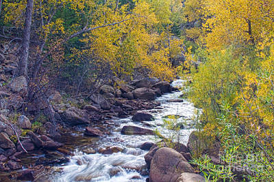 Stream Lanscape Photograph - St Vrain Canyon And River Autumn Season Boulder County Colorado by James BO  Insogna
