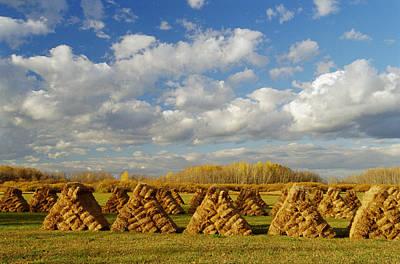 Stacked Hay Bales In Field, Selkirk Art Print by Dave Reede