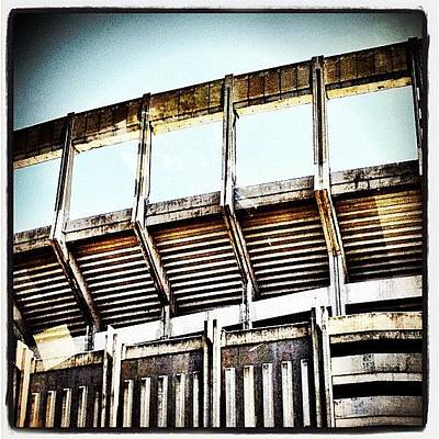 Sports Photograph - Stadium by Natasha Marco