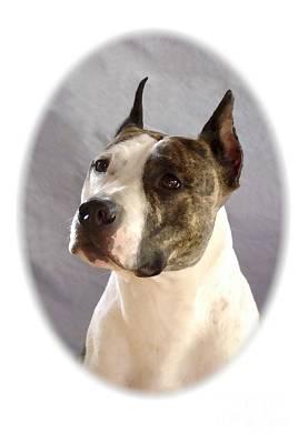 Staffordshire Bull Terrier Digital Art - Staffordshire Bull Terrier - Amstaff 1122 by Larry Matthews