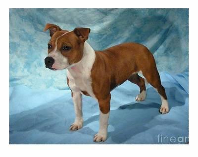 Staffordshire Bull Terrier Digital Art - Staffordshire Bull Terrier - Amstaff 228 by Larry Matthews