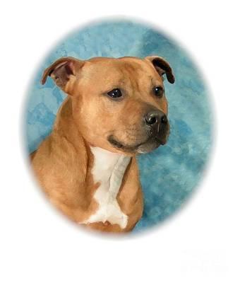 Staffordshire Bull Terrier Digital Art - Staffordshire Bull Terrier - Amstaff 849 by Larry Matthews