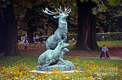 Palais Du Luxembourg Wall Art - Photograph - Stag And Hind Sculpture by Rod Jones