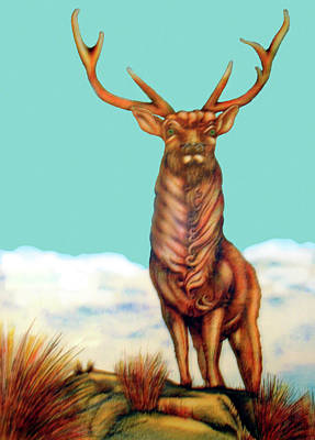 Painting - Stag by Barbara Stirrup