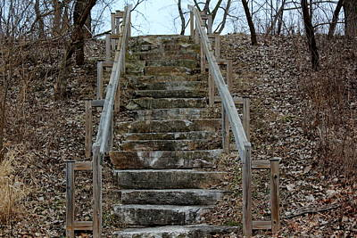 Autumn Photograph - Stairs In The Woods by Rosanne Jordan